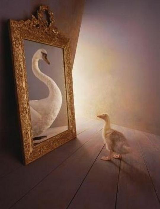 謝天下童話集:醜小鴨
